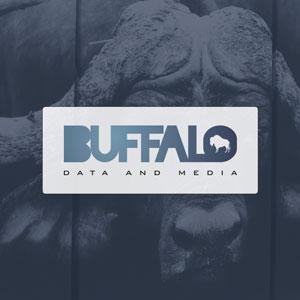 Buffalo Data & Media